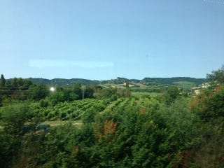 Tuscany countryside on way to Florence.
