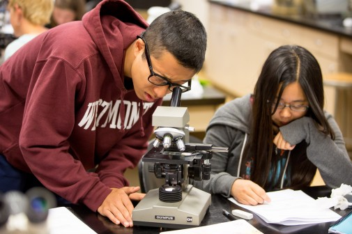 Students explore microscopic pores in Dr. Frank Percival's biology class