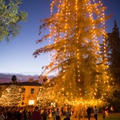 Westmont Hosts Tree Lighting, Santa