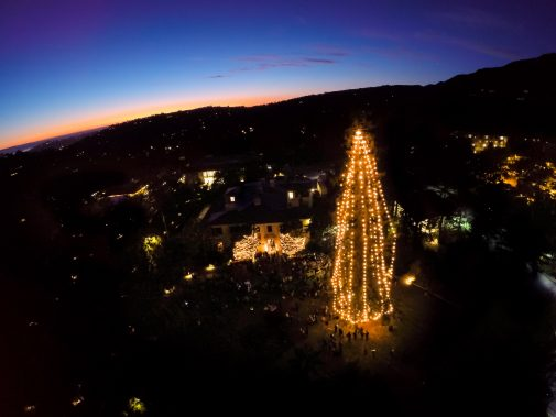 An aerial shot of the glowing Pickle Tree in 2015